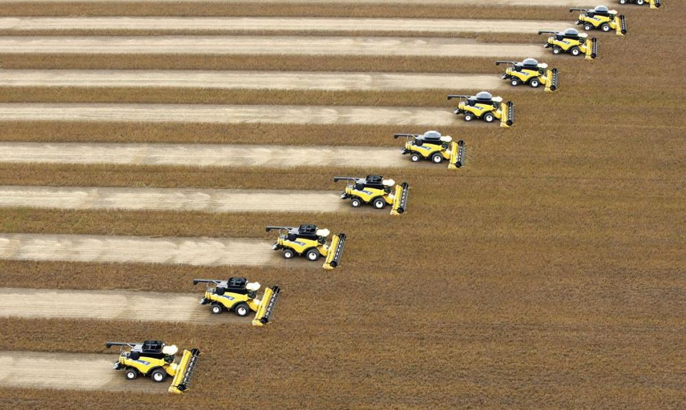 IBGE prevê alta de 1,8% na safra nacional de grãos em 2020