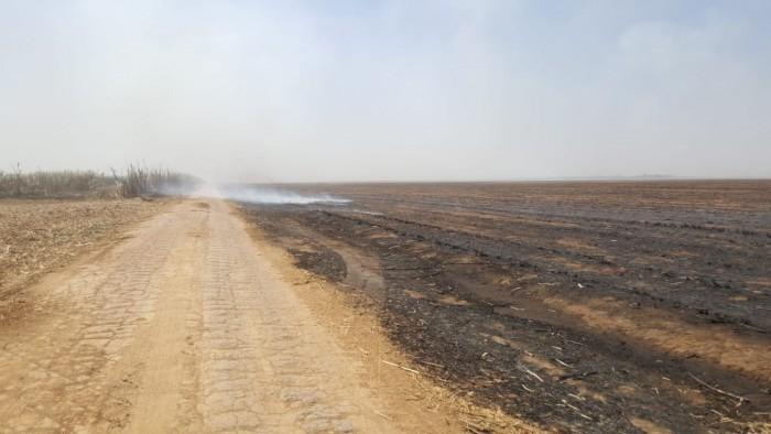 Incêndio atinge mais de mil hectares de plantação de cana-de-açúcar em Sorriso-MT