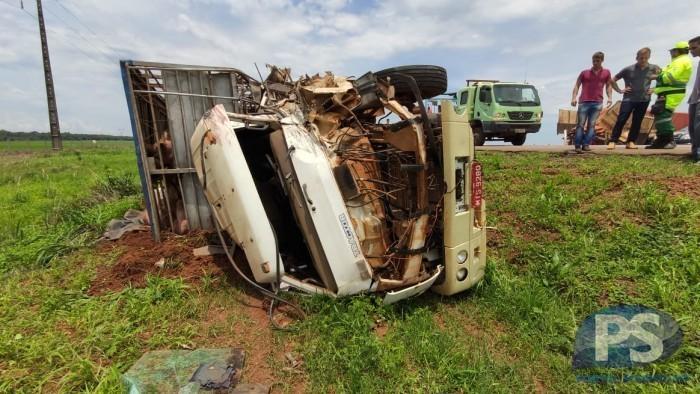 Carreta e bitrem carregado com suínos se chocam na BR-163 em MT; motorista é socorrido